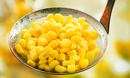 mealie: Freshly harvested ripe cooked corn kernels in a rustic metal ladle rich in carbohydrates and starch and a staple vegetable