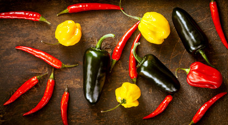chili: Assorted fresh organic red chili peppers, habanero,colorful red and yellow sweet peppers and jalapeno lying scattered on a wooden table viewed from above in a panoramic banner