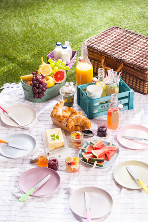 pic nic: Delicious healthy summer picnic on the grass with a bowl of fresh tropical fruit, croissants, butter, sliced watermelon and assorted fruit juice in bottles alongside a wicker hamper