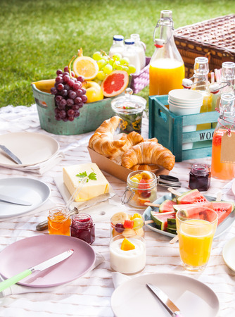 Healthy summer picnic laid out on a blanket on the grass with assorted fresh tropical fruit, juice and croissants with a circle of empty plates and hamper Imagens