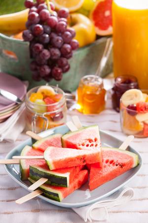 jugo de frutas: De picnic vegano o vegetariano con una variedad de frutas tropicales frescas, sandía en rodajas sobre palos, ensalada de frutas y afrutado preservar rico en vitaminas sobre una manta en el césped con el zumo de naranja hecho en casa