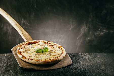 long handled: Steaming hot Italian margherita pizza topped with melted mozzarella cheese served on a vintage long handled wooden board in a pizzeria for a tasty snack or takeaway