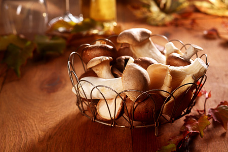 ambiente: Fresh King Oyster mushrooms, Pleurotus eryngii, in a country kitchen displayed in an open wire basket for use in savory cooking in an autumn and fall themed image Stock Photo