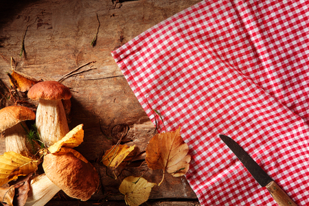 fare: Country fare of fresh autumn mushrooms collected in a fall forest being prepared on a rustic wooden counter with a red and white checked napkin, view from above