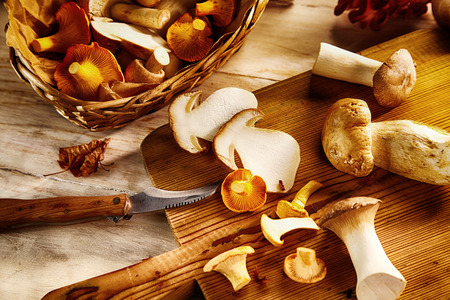 Preparing king oyster mushrooms for a tasty meal slicing them on a wooden chopping board in a rustic kitchen, close up view conceptual of seasonal autumn cuisine