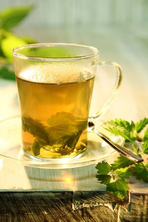 diuretic: Tisane of fresh nettles in boiling water providing a refreshing healthy tea used as a natural diuretic