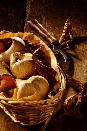 assorted: Collection of fresh autumn fungi in a rustic wicker basket on an old wooden kitchen counter with king oyster mushrooms waiting to be cooked
