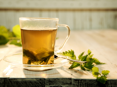stinging nettle: Cup of fresh nettle tea made with the leaves of the stinging nettle and used as a natural diuretic standing on a table with a spray of nettle leaves alongside Stock Photo