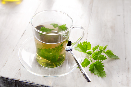 stinging nettle: Cup of nettle tea for healthy natural diuretic with fresh stinging nettle leaves steeping in boiling water in a glass mug