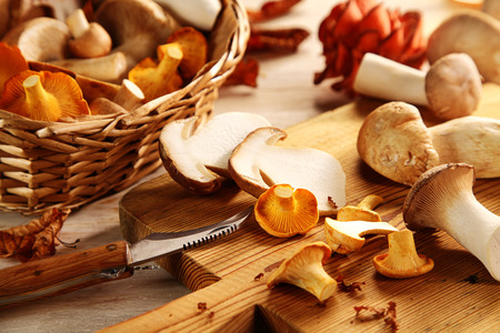 Preparing assorted fresh oyster or pleurotus mushrooms in the kitchen slicing them on a chopping board for healthy vegetarian autumn cuisine