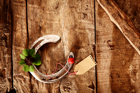 shamrock: The Luck of the Irish - a rustic wooden background with an old metal horseshoe and green lucky Irish shamrock with a red ladybird and blank gift tag, overhead view with copyspace