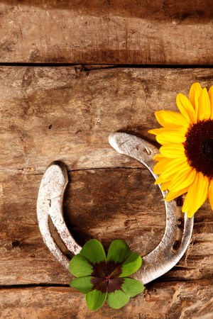 shamrock: Good Luck horseshoe, green Irish shamrock and fresh bright yellow sunflower lying on an old vintage rustic wood background with copyspace, overhead view