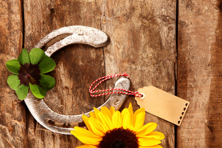 shamrock: Shiny metal horseshoe with a green Irish shamrock symbolic of good luck lying on a rustic wood background with a colorful yellow sunflower, overhead view with copyspace and a gift tag Stock Photo