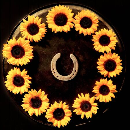 symbolics: Lucky golden horseshoe encircled with a circular frame of colorful yellow sunflowers arranged on a round tray over a black background, overhead view
