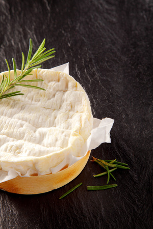 herbs boxes: Close Up of Soft Aged Cheese Round in Wooden Mold with Sprig of Fresh Rosemary on Dark Rough Textured Background and Copy Space