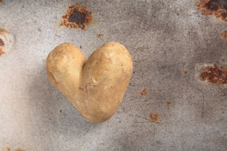 spud: Fun double heart shaped fresh uncooked whole potato or spud lying on an old grunge rusting metal surface with copy space viewed from above