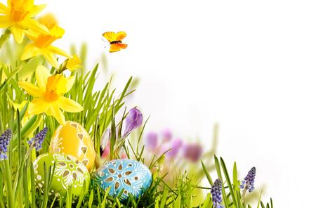 新鮮な春箔名刺デザイン ラップ カラフルな黄色の水仙で緑の草で季節のご挨拶のためコピー スペースと白で寄り添うチョコレートの卵イースター