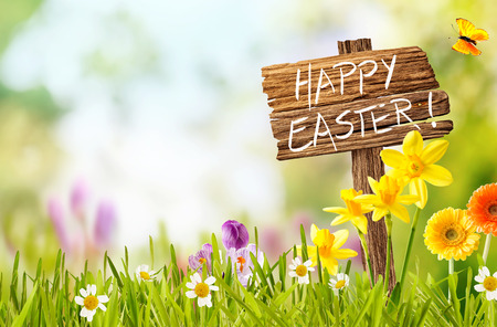 Joyful colorful spring background for a Happy easter with seasonal greeting handwritten on a rustic wooden sign board in spring countryside with fresh green grass and flowers, copy space above Archivio Fotografico