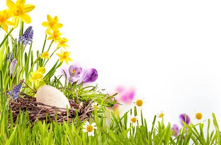 Moderne Gelukkige Pasen seizoensgebonden Illustratie isoleren op een witte achtergrond in een hoek regeling met mooie bloemen en kopie ruimte voor uw eigen concepten Stockfoto