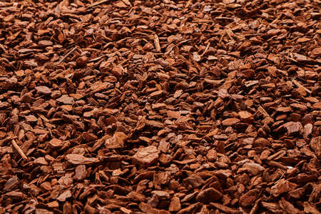bark mulch: Natural full frame background on angled view of red and brown pieces of tree bark mulch for gardening or natural themes
