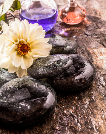 ambiente: Beautiful White Flower in Bloom Resting on top of Pile of Smooth Wet River Rocks on Rustic Surface with Glass Bottles of Colorful Aromatic Essential Oils - Zen Spa Still Life
