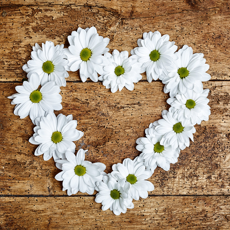 Decorative Valentines heart of white spring daisies arranged on a rustic wooden background with copy space for a greeting for your loved one in square format