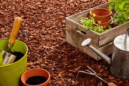 Het planten van potten, troffel, vork, staal gieter en houten mand van zaailingen over rode denneschors mulch in openlucht