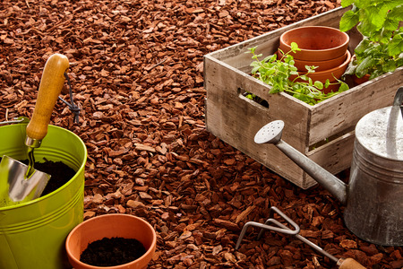 Planting pots, trowel, fork, steel watering can and wooden basket of seedlings over red pine bark mulch outdoors Stok Fotoğraf