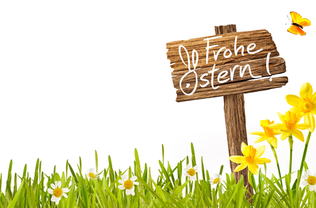 Frohe Ostern German Easter greeting card template with handwritten wishes on a rustic wooden signboard on fresh spring grass with colorful daffodils and daisies isolated on white with copy space