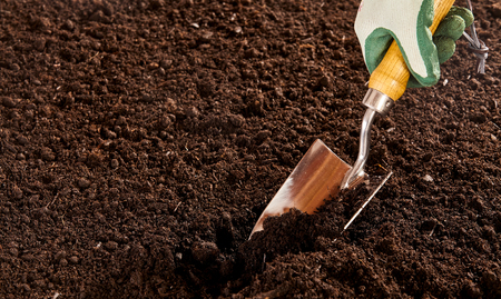 sufficiency: Close up on unidentified hand in rubber and cloth glove using steel trowel to dig into bare soil garden