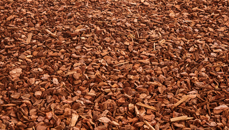 bark mulch: Natural full frame background on angled view of red and brown pieces of tree bark wood chip mulch for gardening or natural themes Stock Photo