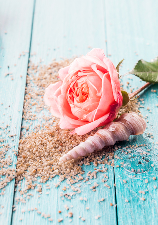 turquoise: Close Up of Delicate Pink Rose Flower and Spiral Seashell Resting on Bed of Scattered Exfoliation Grains on Blue Painted Wooden Surface with Copy Space