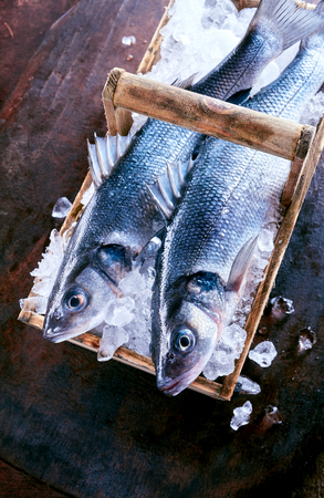 dace: Two fresh Loup de mer fish on ice, also known as the Mediterranean sea bass or sea dace, fresh from the catch in a rustic basket viewed from above