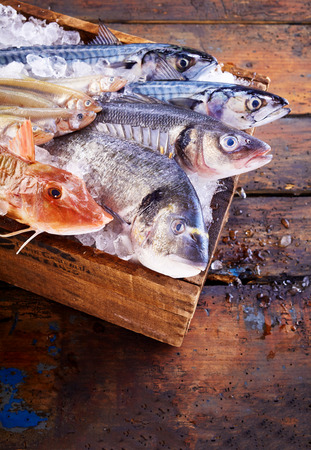 dorade: Wooden box of ice filled with assorted fresh fish for the table with dorade, gurnard, mullet, mackerel and sea bass, high angle view on a rustic wooden table with copy space