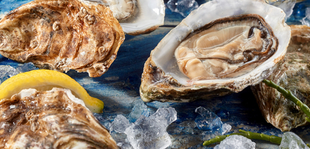 Fresh opened uncooked marine oyster still in the shell on a bed of crushed ice with asparagus and other oysters for a gourmet starter or appetizer