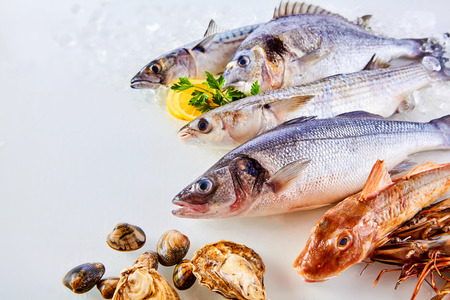 grey mullet: High Angle Still Life View of Fresh Raw Fish, Shellfish and Seafood Arranged in Attractive Display on White Background with Lemon