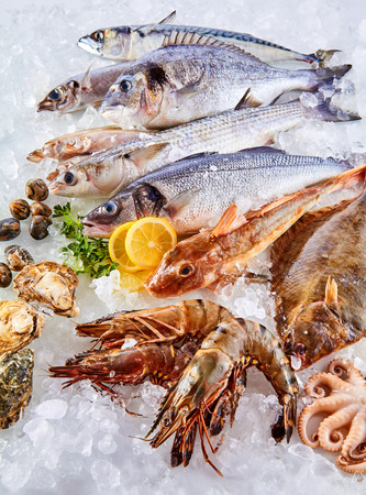 High Angle Still Life View of Fresh Raw Fish, Shellfish and Seafood Arranged in Attractive Display and Chilling on Bed of Cold Ice with Lemon Wedges