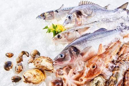 Erhöhte Stillleben der Vielzahl von Raw frischem Fisch und Meeresfrüchten Chilling auf dem Bett von Cold Ice in Meeresfrüchte Marktstand mit Textfreiraum