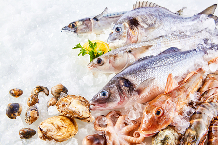 High Angle Still Life of Variety of Raw Fresh Fish and Shellfish Chilling on Bed of Cold Ice in Seafood Market Stall with Copy Space