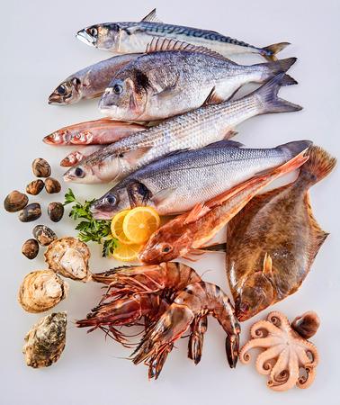 Hoog standpunt Stilleven van verse rauwe vis, schelpdieren en zeevruchten Geschikt in attractieve display op witte achtergrond