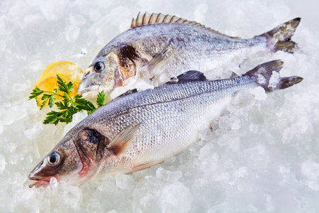 raw fish: High Angle Full Length View of Raw Fresh Fish Chilling on Cold Bed of Ice with Herb Garnish and Lemon Slices Stock Photo