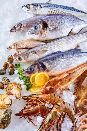 Erhöhte Stillleben Ansicht von frischem rohem Fisch, Muscheln, Meeresfrüchte Angeordnet in attraktiven Display und Chillen auf dem Bett von Cold Ice mit Zitronenschnitzen