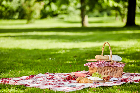 Delicious picnic spread with fresh fruit, bread, spicy sausage and cheese spread out on a red and white checkered cloth in a lush spring park