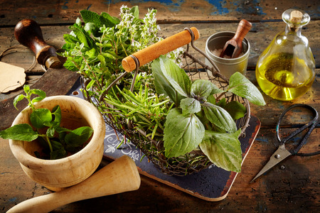 corked: Various fresh green culinary herbs, corked bottle of olive oil, mezzaluna, scissors and pestle on table Stock Photo