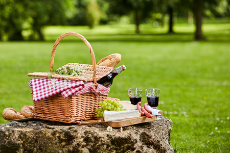 pan y vino: día de campo elegante con el vino tinto, las uvas frescas, queso, pan y embutidos dispuestos sobre una mesa rústica de piedra en un exuberante parque de la primavera o verano verde, con copia espacio