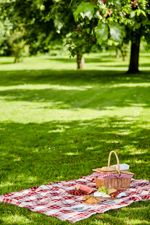 picnic cloth: Enjoying a healthy outdoor spring picnic with a red and white checked cloth on green grass spread with fresh fruit, sausages cheese and bread alongside a wicker hamper