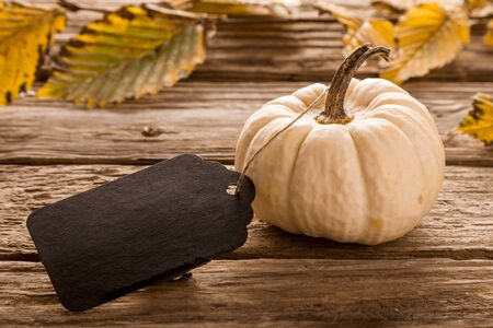 yellow stem: Ornamental white gourd with a blank wooden tag tied to the stem on a rustic wooden table with colorful yellow autumn or fall leaves in the background