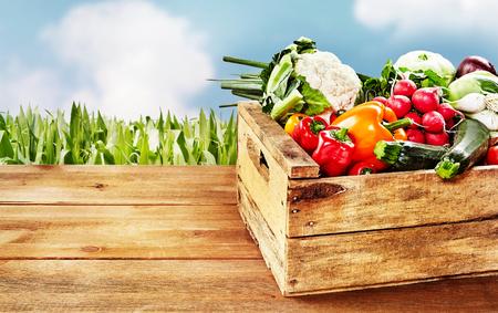 구름과 옥수수 줄기의 배경 가진 테이블의 모서리에 다양 한 야채와 나무 상자. 복사 공간이 포함되어 있습니다.