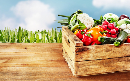 Wooden crate with various vegetables on corner of table with background of clouds and corn stalks. Includes copy space.