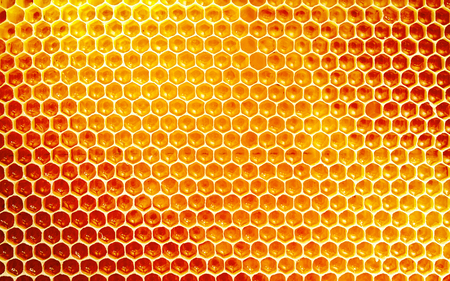Background texture and pattern of a section of wax honeycomb from a bee hive filled with golden honey in a full frame view